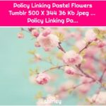 Policy Linking Pastel Flowers Tumblr 500 X 344 36 Kb Jpeg ... Policy Linking Pa...