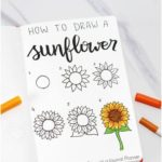 50+ Best Flower Drawing Tutorials To Embellish Your Pages